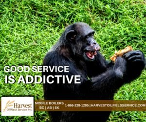 harvest-monkey