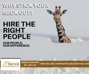 harvest-giraffe