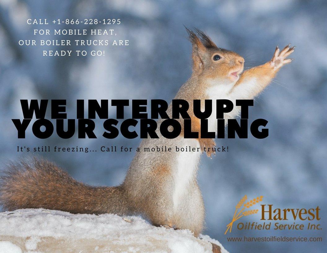 We interrupt HOS